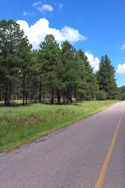 Weekend in Ruidoso, New Mexico